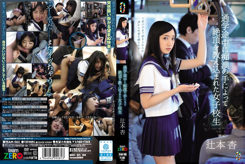 Cover [TEAM-065] In The Middle School We Were Taught The Capstone By The Hand Of Molesting School Girls Tsujimoto Apricot